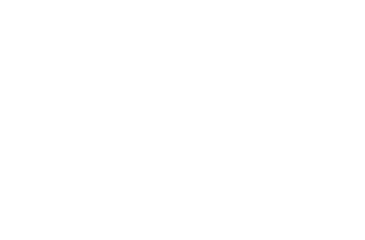 ScaleDriver Logo